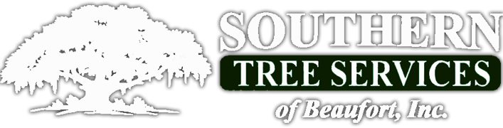Southern Tree Services of Beaufort, SC